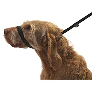 UniWalker-Figure-of-8-Dog-Lead-for-dogs-that-pull-3-leads-in-1-Black