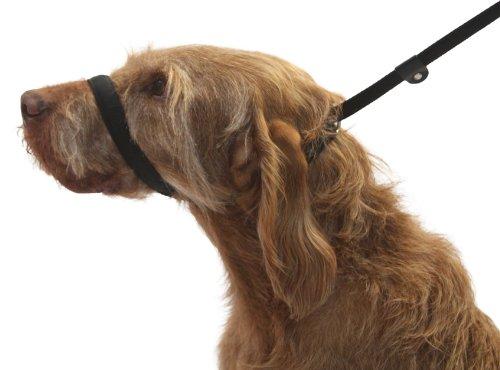 Dogs & Co. UniWalker Figura de 8 Correa de Perro para Perros Que tiran. 3 Cables en 1. Color Negro.