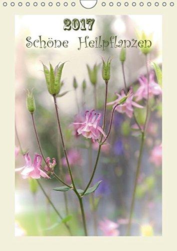 Schöne Heilpflanzen (Wandkalender 2019 DIN A4 hoch): Die schönsten Menschenfreunde - auf ein...