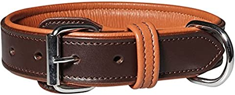 Detroit leather dog collar with buckle guard Brown Neck circumference 40-48cm