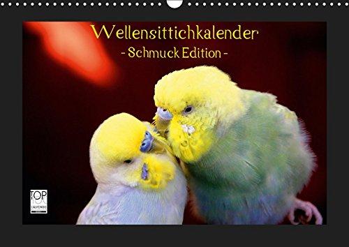 Wellensittichkalender - Schmuck Edition (Wandkalender 2019 DIN A3 quer): Mit dem brandneuen Wellensittichkalender des Naturfotografen Björn Bergmann ... (Monatskalender, 14 Seiten ) (CALVENDO Tiere)