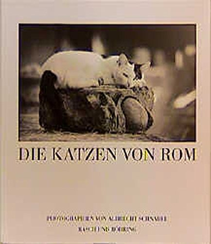 Die Katzen von Rom (Edition Rasch und Röhring)
