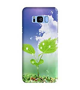 Samsung Galaxy S8 Plus Printed Back Cover / Designer 3D Printed High Quality Back Cover for Samsung Galaxy S8 Plus / Hard Case Samsung Galaxy S8 Plus Mobile Cover By Gismo