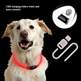 KOBWA LED Dog Collar, USB Rechargeable Light Up Collar with 3 Glowing Modes and Adjustable Cut to Size for Dogs, Flashing Dog Collar for Night Visibility & Safety