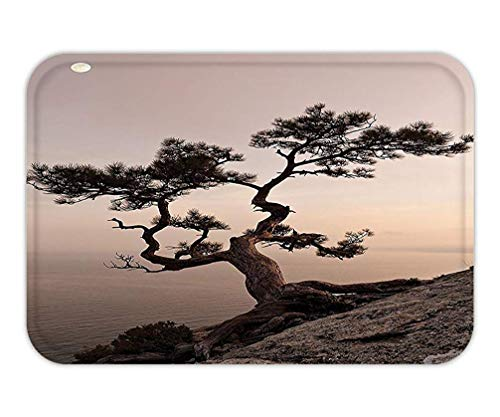 ASKYE Doormat Farm House Decor Lonely Juniper Tree on Seaside Cliff Full Moon at Sunset Nature Theme Decoration for Bedroom Living Room Dorm Brown and Gray.jpg15.7X23.6 Inches/40X60cm