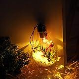 Spherical Bulb TAOtTAO Weihnachtsknopf-Batterie-Kupferdraht-kugelförmige Birnen-Suspendierungs-Lampe LED (D)