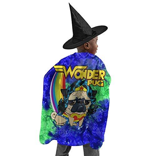 - Boy Wonder Halloween Kostüm
