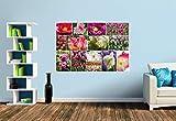 Premium Foto-Tapete Tulpen Collage (verschiedene Größen) (Size S | 186 x 124 cm) Design-Tapete, Vlies-Tapete, Wand-Tapete, Wand-Dekoration, Photo-Tapete, Markenqualität von ERFURT