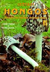 Setas-Hongos 2. Guía de los hongos del País Vasco (Mendia) por Xabier Laskibar