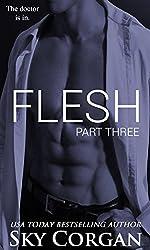 Flesh: Part Three (The Flesh Series Book 3) (English Edition)