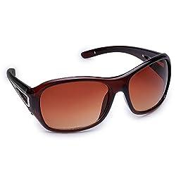 Olvin oversized Womens Sunglasses (OL270-02)