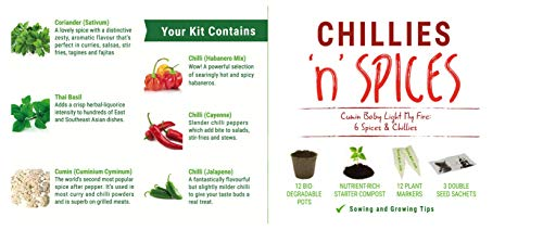 Zoom IMG-2 chillies n spices kit regalo