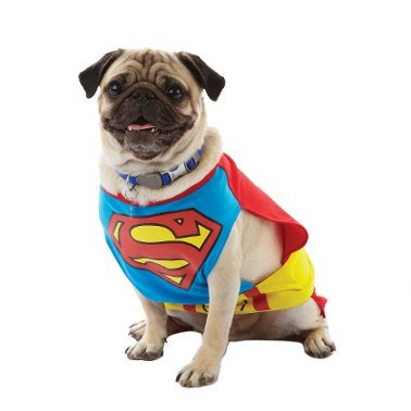 Pet Superman Kostüm - DC Comics Superman Hund Kostüm XS