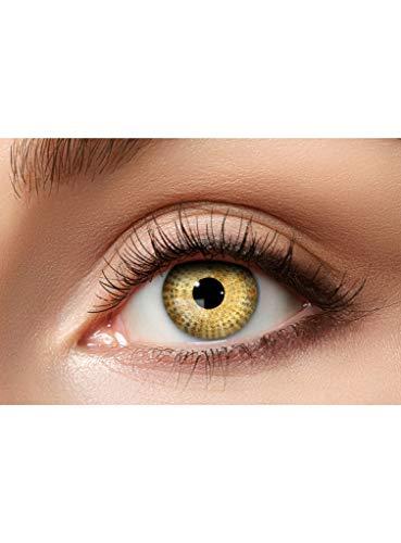 Maskworld Bernstein Kontaktlinsen / Monatslinsen - Motivlinsen ohne Sehstärke - Unisex - Erwachsene - ideal für Halloween, Karneval, Motto-Party & Cosplay