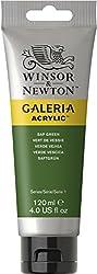 Winsor & Newton 120ml Galeria Acrylic Paint - Sap Green