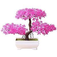 Suchergebnis Auf Amazon De Fur Fensterbank Deko Rosa Pflanzen