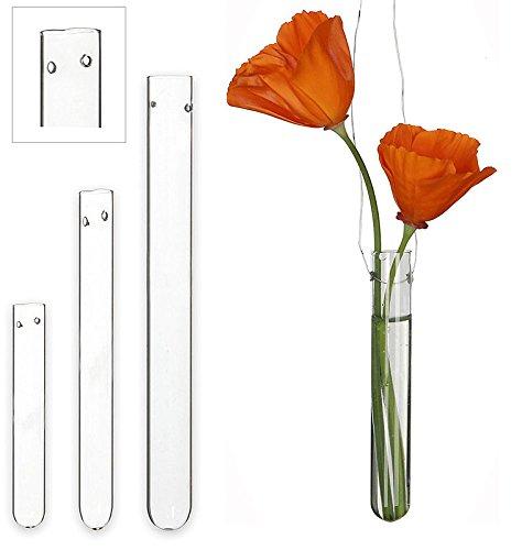 Reagenzglas mit Loch, 20 cm, 12 Stück, Blumen-Vase, Glas, Röhre (Glas Reagenzgläser Loch)