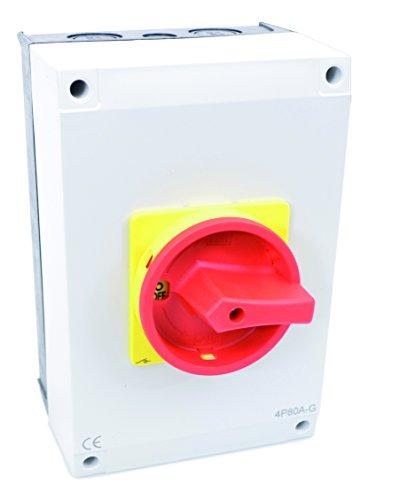 Hauptschalter 100A 3-polig im Gehäuse, Reparaturschalter, Lasttrennschalter, Not-Aus-Schalter, JS3P100A-G