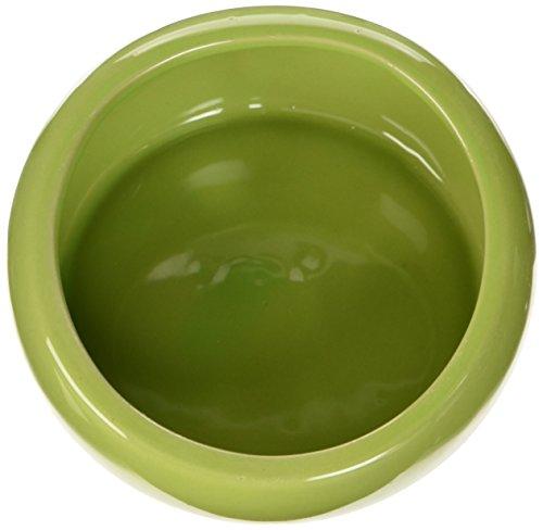 Living World  Keramiknapf, grün groß