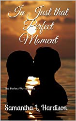 In Just that Perfect Moment (The Perfect World Series Book 2)