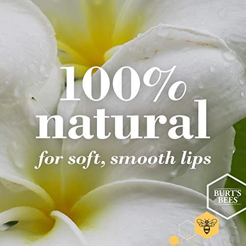 Burt's Bees 100% Natural Lip Balm (4)