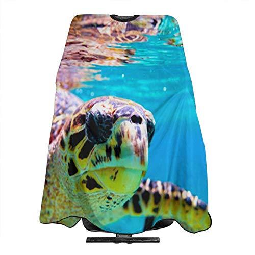 Kostüm Katze Schildkröte - Schildkröten-Umhang, wasserfest, für Friseure, Haarschnitt, Meeresgrün
