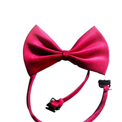 Hund / Katze Kragen - SODIAL(R) Hund / Katze Einstellbare Fliege Bogen Hals Bindung Zubehoer Kragen