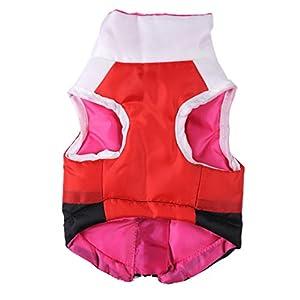 Hiver Epais Chaud Snowsuit Vêtements/Veste/Capuche/Costume /Doudoune/Manteau/Déguisement pour Chien Chiot