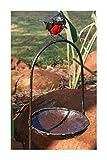 Farm and Garden Ravissant RSPB Métal Robin Rouge sur Une Arche Bain d'oiseau...