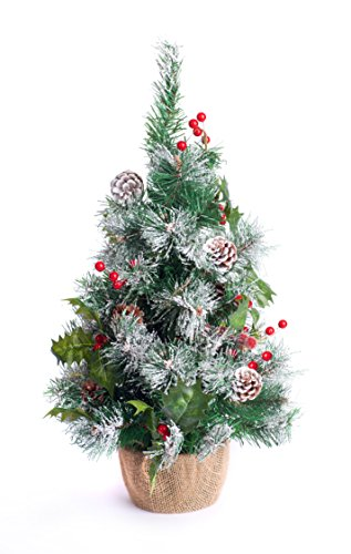 Best Artificial 2ft / 60cm Small Decorated Indoor Christmas Tree (Frosted)