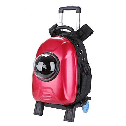 Daeou zaino per animali domestici animale domestico borsa asta panno oxford pc cane trasportare il gatto traspirante sacchetto fuori spazio borsa doppia spalla zaino