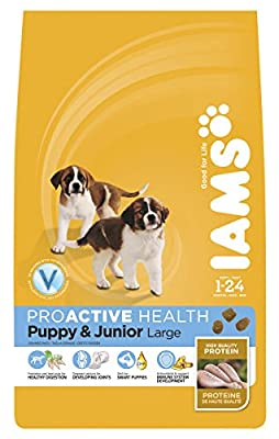 Iams Dog Puppy & Junior Large Breed