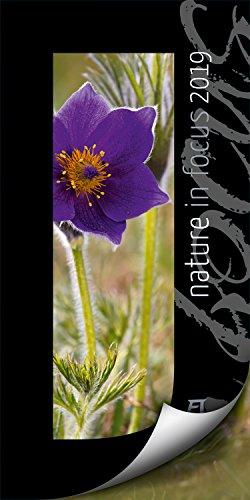 Nature in Focus 2019, Wandkalender mit Passepartouts zum Wegklappen im Hochformat (33x66 cm) - Inspirations- / Naturkalender mit Monatskalendarium