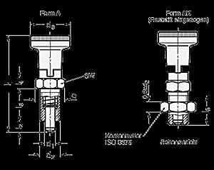 Rastbolzen GANTER GN 617.1-10-A