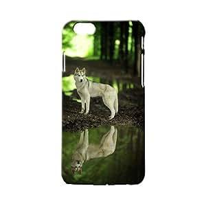 BLUEDIO Designer 3D Printed Back case cover for Apple Iphone 6 Plus / 6S plus - G1779