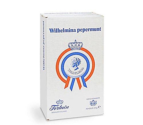 Wilhelmina Pepermunt Pastillen 3000g Karton (Pfefferminz)