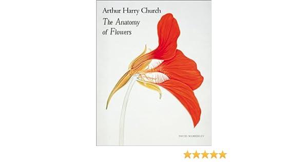 Arthur Harry Church: The Anatomy of Flowers: Amazon.co.uk: A.H. ...