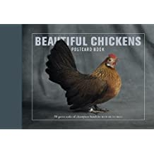 Beautiful Chickens Postcard Book: 30 postcards of champion breeds