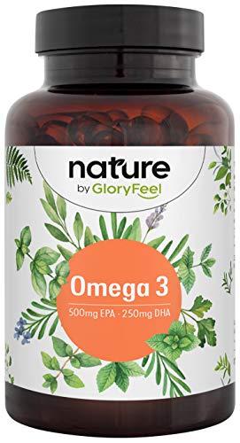 Omega 3 Fischöl Kapseln 1000mg - Hochdosiert mit 500mg EPA und 250mg DHA pro Softgel - Essentielle Omega-3 Fettsäueren - Premium Fischöl aus Anchovis - Laborgeprüfte Herstellung in Deutschland