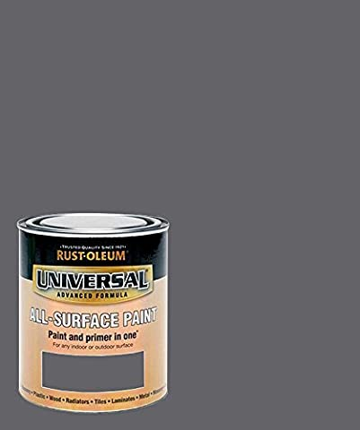 Rust-Oleum RO0030105G1 750 ml Universal Paint - Gloss Slate