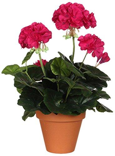 MICA Decorations 975196 Blumen, Geranium großen, rosa
