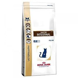 Royal Canin Veterinery Diet Gastro Intestinal Feline Cibo Secco per Gatti 4kg