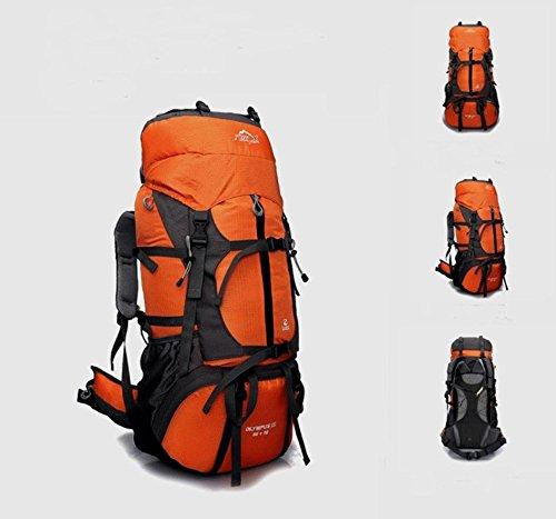 Professionellen Outdoor Wandern Camping Rucksack Schulter Rucksäcke 65L große Kapazität Tasche Picknick bietet Orange