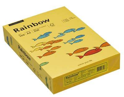 Preisvergleich Produktbild Rainbow Kopier-Karton 160 g/qm DIN A4 intensivgelb 250 Blatt