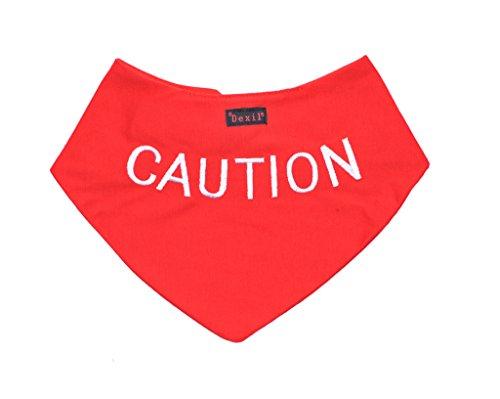 """Personalisierbares Hunde-Bandana """"Caution"""", Rot, modisches Halstuch, verhindet Unfälle durch Vorwarnen anderer Hunde"""