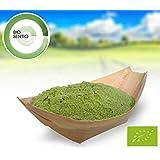 Bio Gerstengras Pulver, 1000 g, in Deutschland angebaut und geprüft, Rohkostqualität!