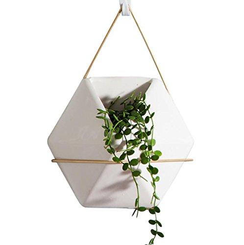 Escandinavo blanco porcelana flores macetas Golden hierro macetas verde agua plantas carnosas maceta cultivo interior decoración Hexagon