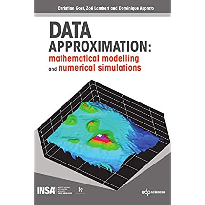 Data approximation : Mathematical modelling and numerical simulations