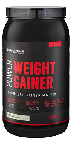 Body Attack Power Weight Gainer Vanilla