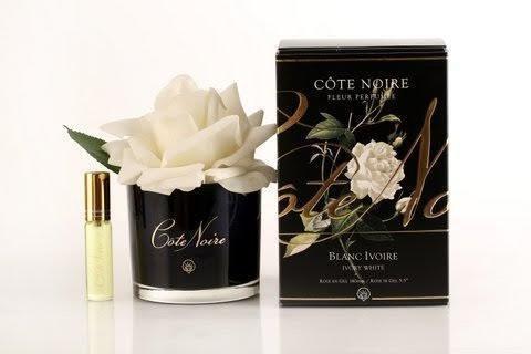 Côte Noire Blanc ivoire - Rose touche naturelle dans un vase noir avec spray parfumé